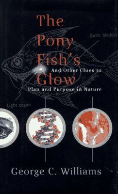 The Pony Fish's Glow