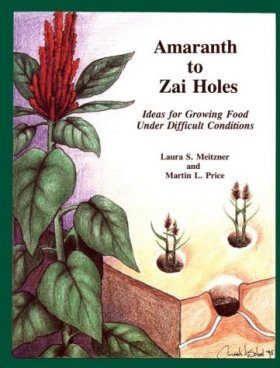 Amaranth to Zai Holes