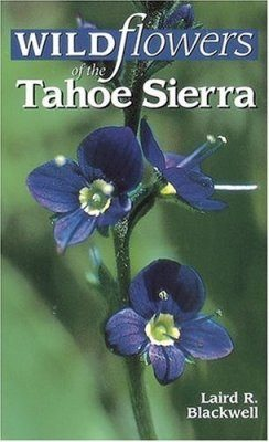 Wildflowers of the Tahoe Sierra