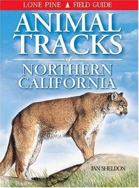 Animal Tracks of Northern California