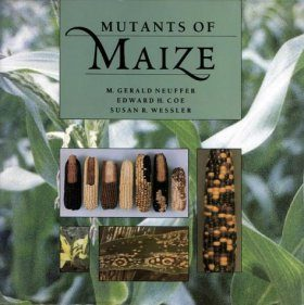 Mutants of Maize