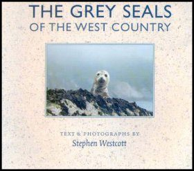 The Grey Seals of the Westcountry