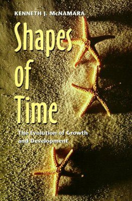 Shapes of Time