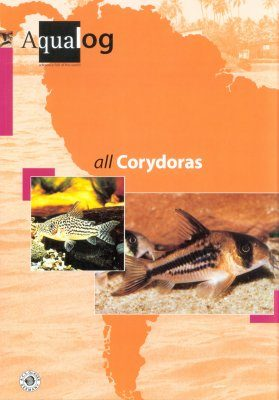 All Corydoras [English / German]