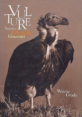 Vulture: Nature's Ghastly Gourmet
