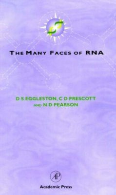 The Many Faces of RNA