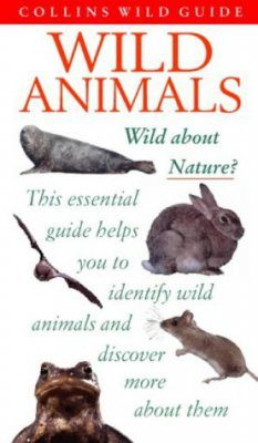 Collins Wild Guide: Wild Animals of Britain and Europe
