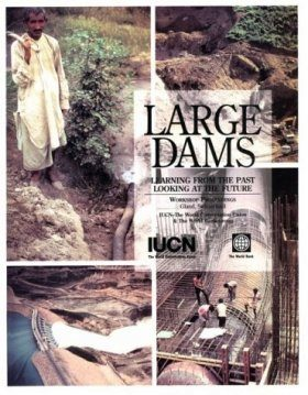 Large Dams: Learning from the Past, Looking at the Future