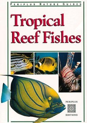 Tropical Reef Fishes