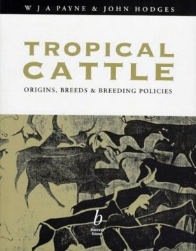 Tropical Cattle