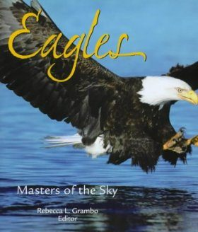 Eagles: Masters of the Sky