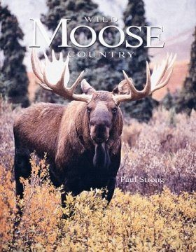 Wild Moose Country