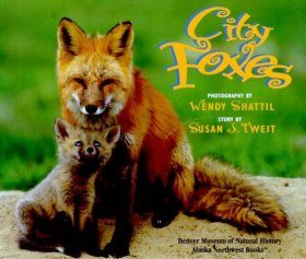 City Foxes