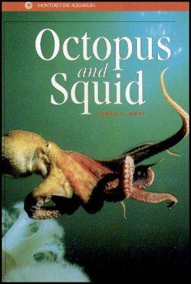 Octopus and Squid
