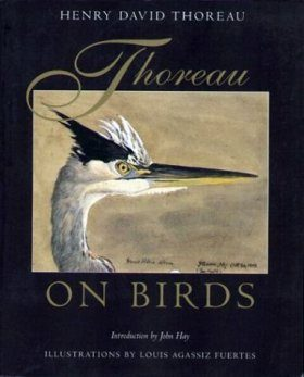 Thoreau on Birds