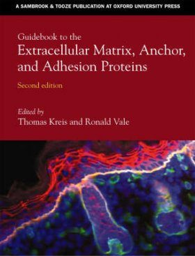 Guidebook to the Extracellular Matrix and Adhesion Proteins