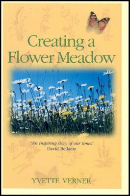 Creating a Flower Meadow