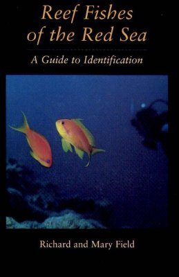 Reef Fishes of the Red Sea