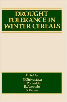 Drought Tolerance in Winter Cereals