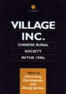 Village Inc: Chinese Rural Society in the 1990s