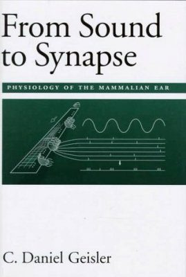 From Sound to Synapse