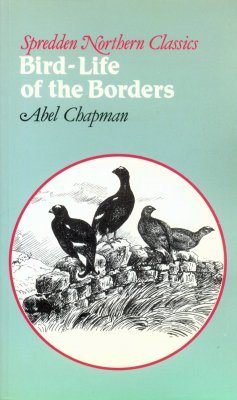 Bird-Life of the Borders
