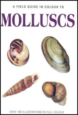 A Field Guide in Colour to Molluscs