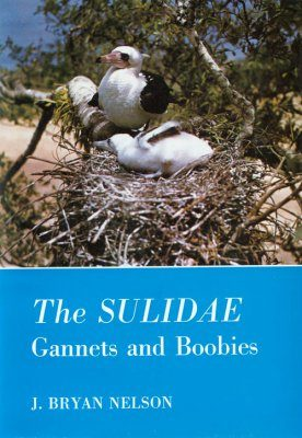 The Sulidae: Gannets and Boobies