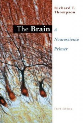 Brain, The - A Neuroscience Primer