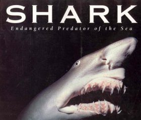 Shark: Endangered Predator of the Sea