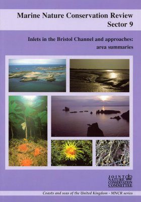 Marine Nature Conservation Review, Sector 9: Inlets in the Bristol Channel and Approaches: Area Summaries