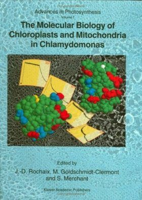 The Molecular Biology of Chloroplasts and Mitochondria in Chlamydomonas