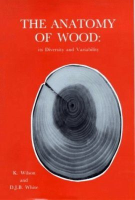 The Anatomy of Wood