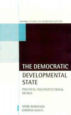 Democratic Development State: Political and Institutional Design