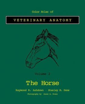 Colour Atlas of Veterinary Anatomy, Volume 2: The Horse