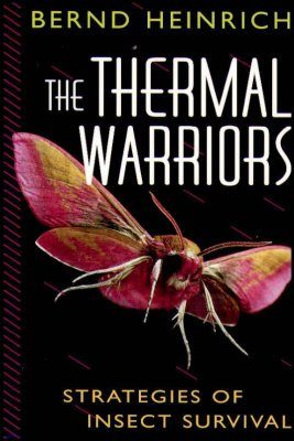 The Thermal Warriors