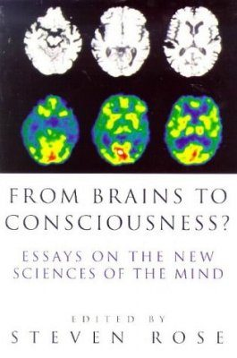 From Brains to Consciousness?