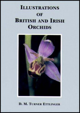 Illustrations of British and Irish Orchids