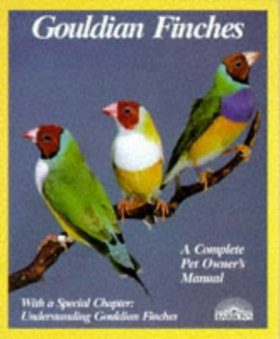 Gouldian Finches