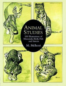 Animal Studies: 550 Illustrations of Mammals, Birds, Fish and Insects