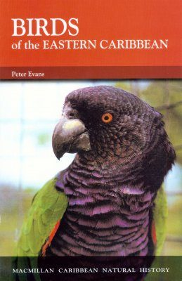 Birds of the Eastern Caribbean