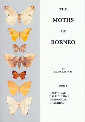 The Moths of Borneo, Part 8