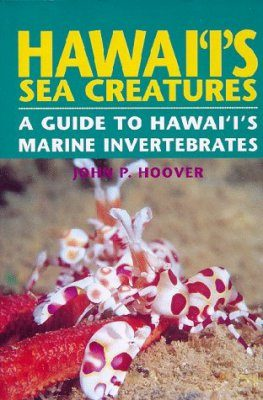 Hawai'i's Sea Creatures