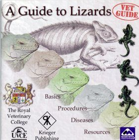 A Guide to Lizards: CD-ROM
