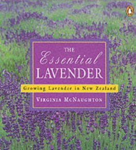 The Essential Lavender