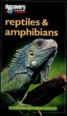 Discovery Explore Your World Handbook to Reptiles and Amphibians