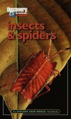 Discovery Explore Your World Handbook to Insects and Spiders