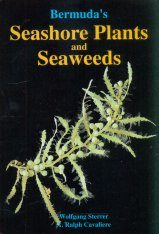 Bermuda's Seashore Plants and Seaweeds