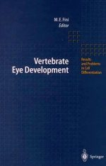 Vertebrate Eye Development