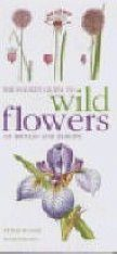 The Mitchell Beazley Pocket Guide to Wild Flowers of Britain and Europe